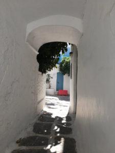 水谷晨ーミコノス島